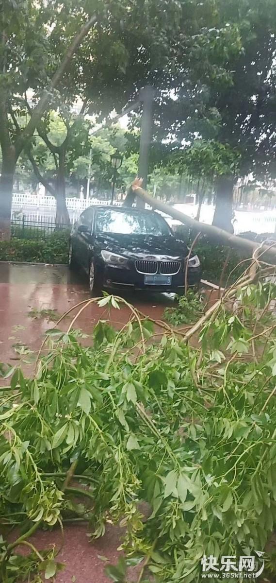 宝马命更好?金田路众多车被水淹,但这辆车够安全