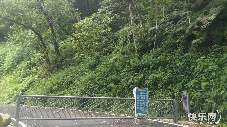 北山寺上茶园的道路还在封着,暂时上不去哦